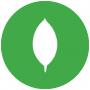 ASUSTOR NAS App mongoexpress-docker
