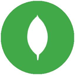 Mongo Express asustor NAS App