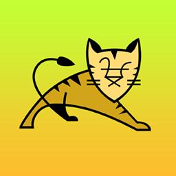 Tomcat asustor NAS App